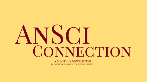 AnSci Connection, a monthly newsletter from the department of animal science.